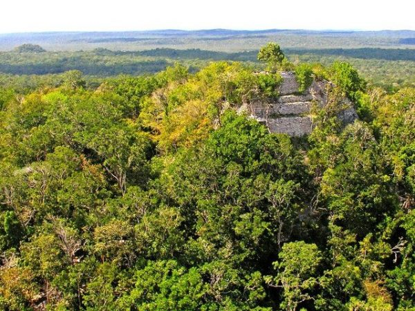 El Mirador Community Speaks out against U.S. Senate bill that could turn Guatemalan Mayan Ruins into a Privately Managed Resort