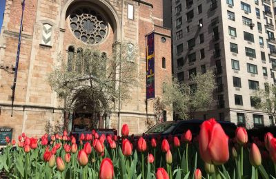 Resilience Through Community: The Work of a Pastor in COVID-19 New York City