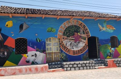 """Guancasco Muralista."" Artists beautify La Arada, Santa Bárbara, in Muralist Meet"