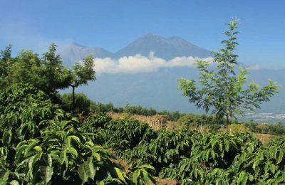 Guatemala's Nature Tourism-Corazón del Mundo Maya