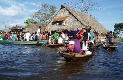 Biodiversity Loss Threatens Human Nutrition in the Amazon