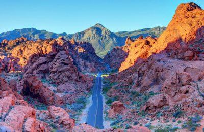 Nevada – Immigration State Profile