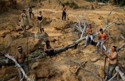 Deforestation of the Brazilian Amazon
