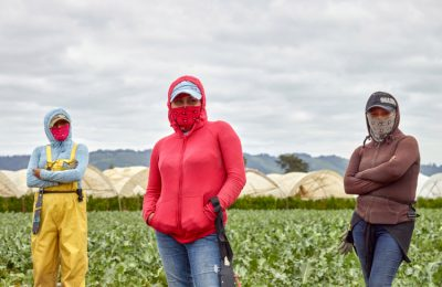 Legislation Updates for Farmworkers and Immigrants in California
