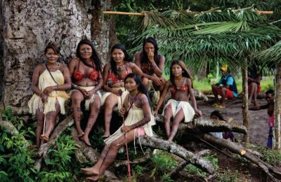 Defenders of the Amazon Under Threat in Brazil