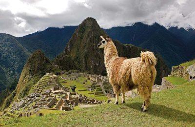 Preserving Machu Picchu